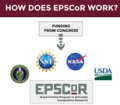 EPSCoR-Infographic_Final c