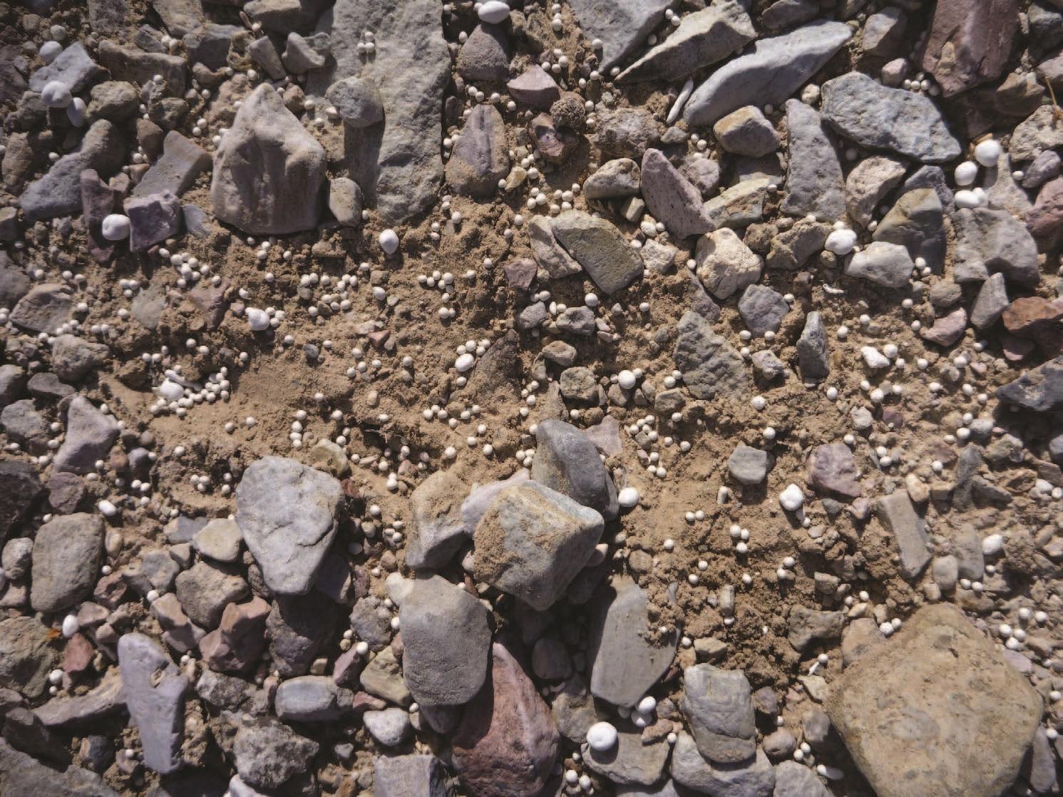 Small bits of pelletized steel amidst desert rocks and dirt.